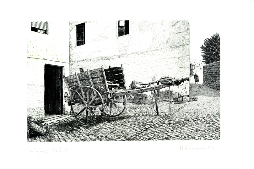 Portugese Cart