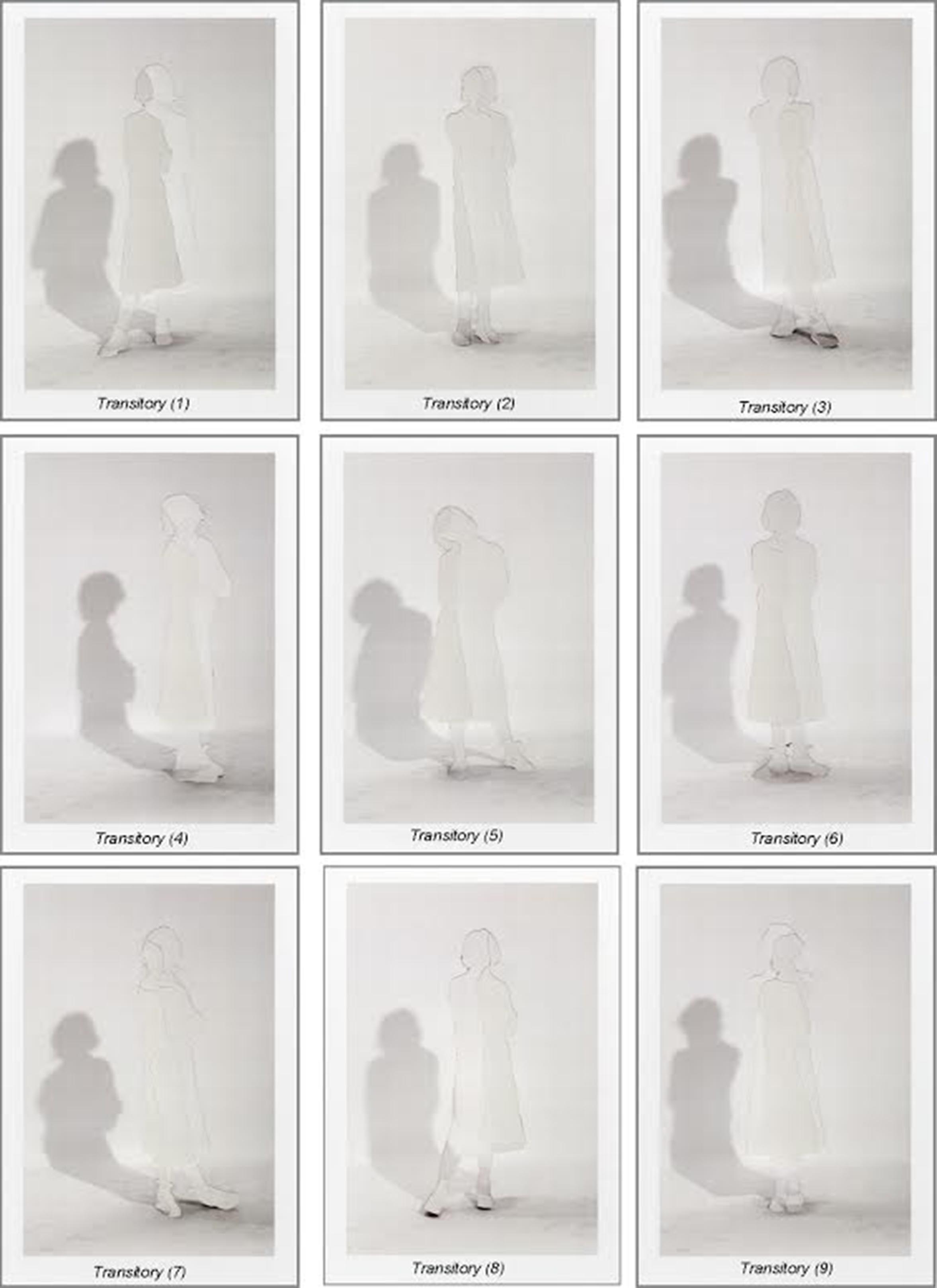 Transitory (series)