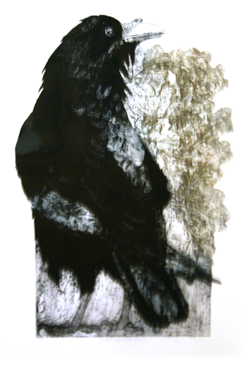 Raven With Oak Leaves