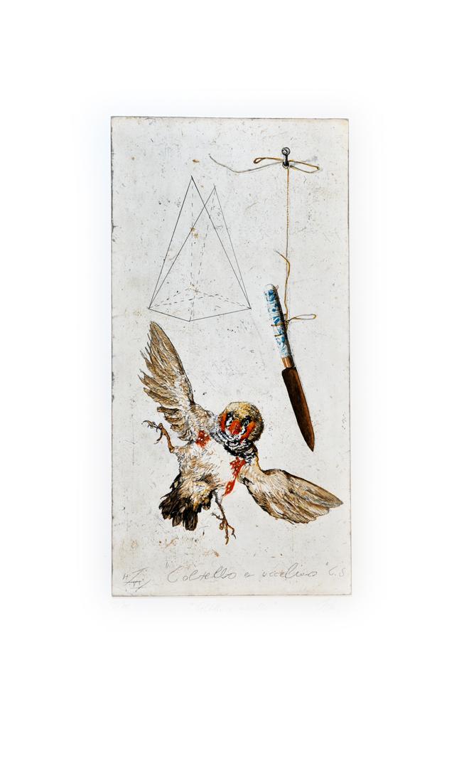 Coltello e Uccello