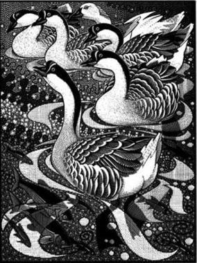 Gaggle of Geese II