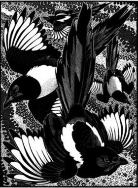 Tiding Of Magpies By Colin See Paynton Official Site Leading