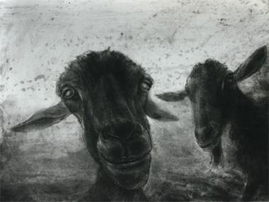 Two Goats (Medium)