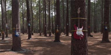 The Plea - Dreamers Stadium - Guitars
