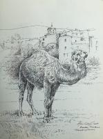 Provence-The Circus Camel by Alan  Cotton