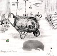 Badger in the Barrow by Chris Orr MBE RA