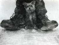 Dog and Shoes by Chris Salmon