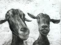 Two Goats (Large) by Chris Salmon