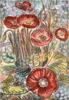 Poppies by Deborah Treliving
