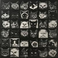 Another Cat Show by Hilary Paynter