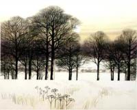 A walk in the Snow by Kathleen Caddick