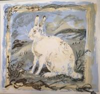 White Hare by Mark Hearld