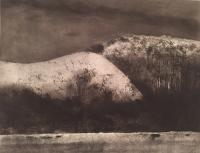 A Cumberland Hillside by Norman Ackroyd CBE, RA, ARCA, RE, MA