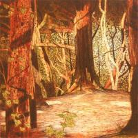 In Shade, Dalkey Hill Woodland by Niall Naessens