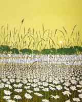 Daisy Moon by Phil Greenwood