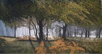 Dawn Glade (reserved)  by Phil Greenwood