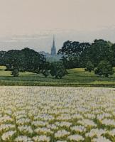 Heath Land by Phil Greenwood
