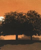 Heath Trees by Phil Greenwood