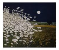 Moon Lights  by Phil Greenwood