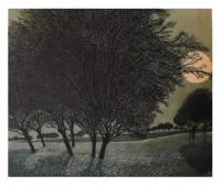 Primrose moon by Phil Greenwood