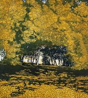 Shadows Way (Reserved) by Phil Greenwood