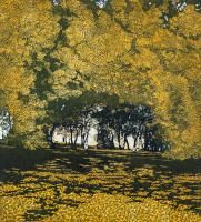 Shadows Way by Phil Greenwood