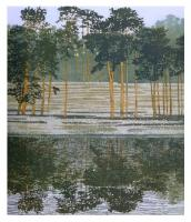 Reflection by Phil Greenwood