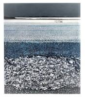 Silver Tide by Phil Greenwood
