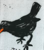 Black Bird by Richard Spare