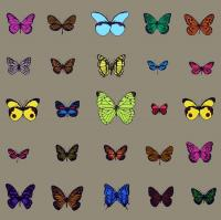 25 Butterflies by Scott Campbell