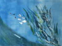 Seaweeds  by Sally-Ann Crowe