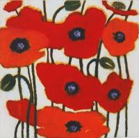 Poppies by Susie Perring