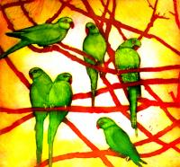 City Birds by Susie Perring