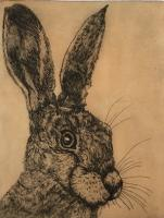 Fair Hare  by Sonia Rollo