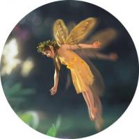 Believe Media - Fairy (Circle) by StormStudios (after Thorgerson)