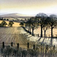 Winter Shadows by Kathleen Caddick