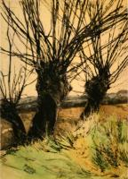 Three Willows by Mary Cossey